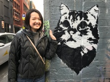 Melbourne Street Art, Cat graffiti found all over the city.